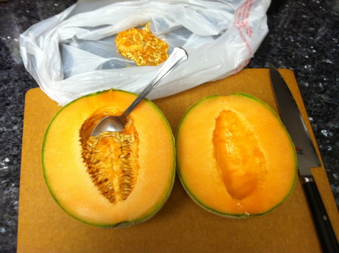 how to cut a cantaloupe 2