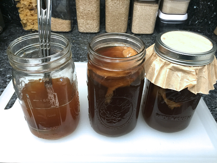 how to make kombucha with coffee filter